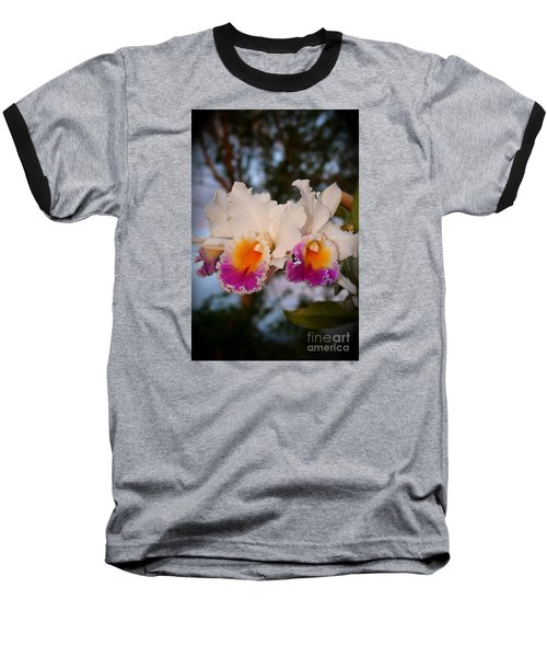 Orchid Elsie Sloan Baseball T-Shirt by The Art of Alice Terrill