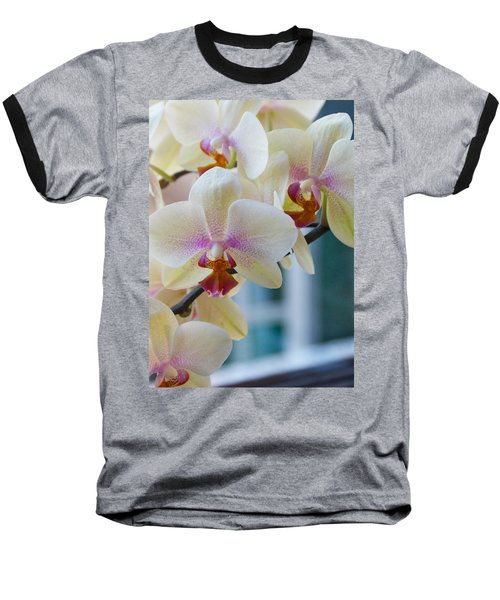 Orchids In The Morning Light Baseball T-Shirt by Debbie Karnes