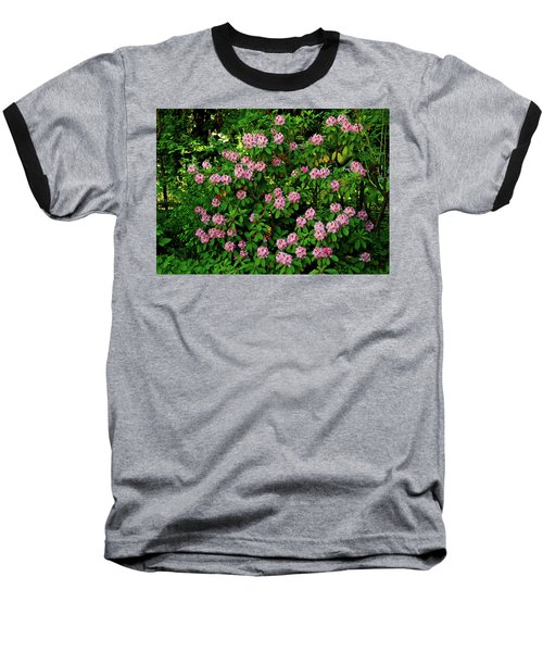 Oregon Azaleas Baseball T-Shirt by Ed  Riche