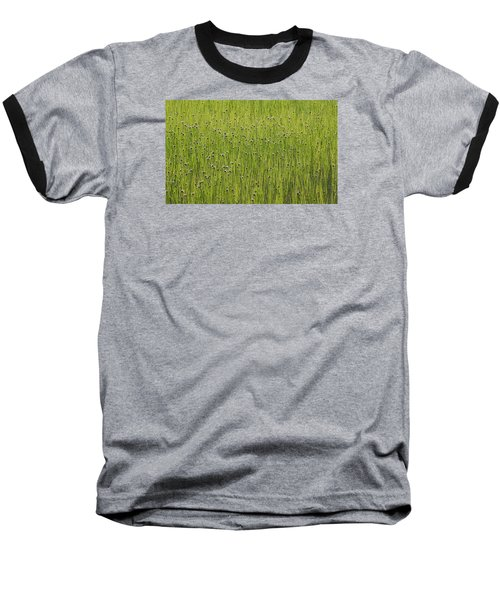 Organic Green Grass Backround Baseball T-Shirt