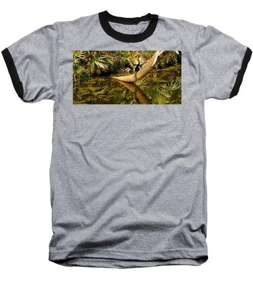 Oriental Darter Anhinga Melanogaster Baseball T-Shirt by Panoramic Images