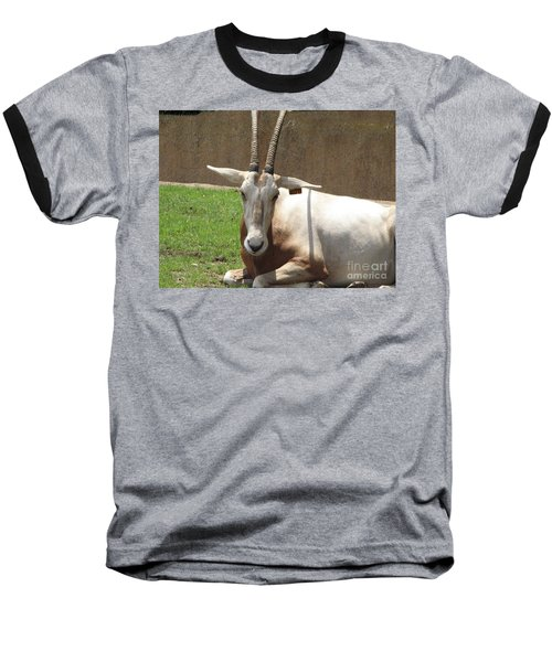 Oryx Baseball T-Shirt by DejaVu Designs