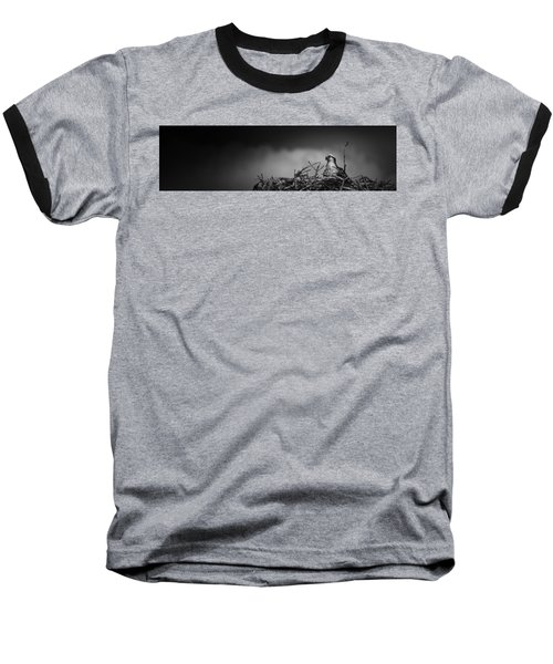 Baseball T-Shirt featuring the photograph Osprey by Bradley R Youngberg