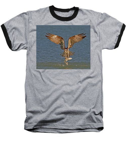 Osprey Morning Catch Baseball T-Shirt by Susan Candelario