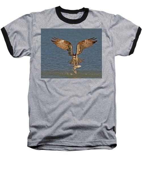 Osprey Morning Catch Baseball T-Shirt