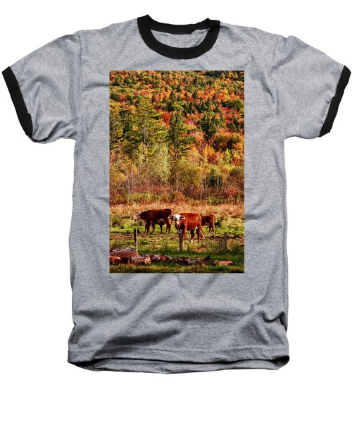 Baseball T-Shirt featuring the photograph Cow Complaining About Much by Jeff Folger