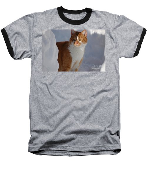 Baseball T-Shirt featuring the photograph Otis by Christiane Hellner-OBrien