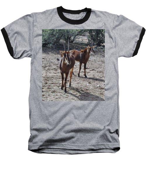 Out Of Africa B Baseball T-Shirt