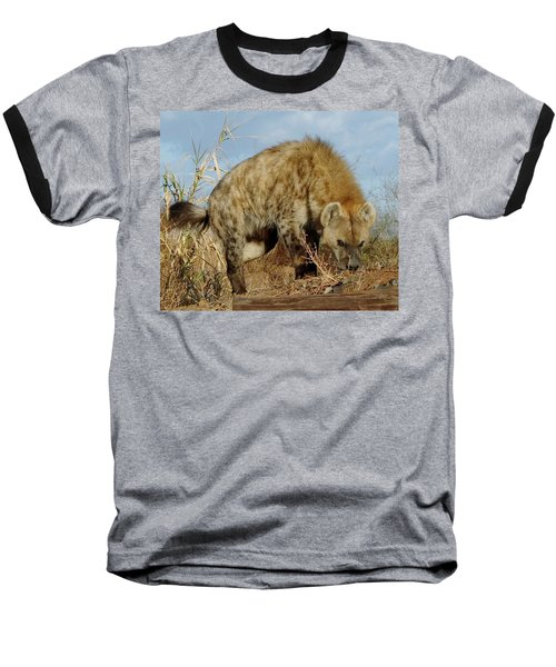 Out Of Africa Hyena 1 Baseball T-Shirt