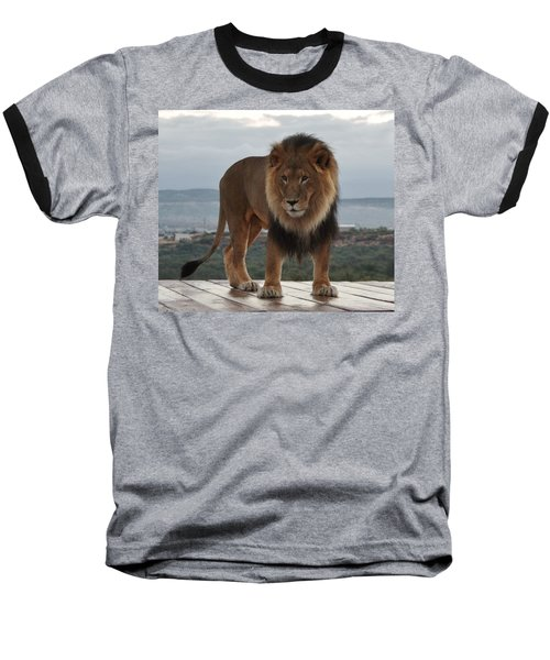 Out Of Africa Lion 3 Baseball T-Shirt
