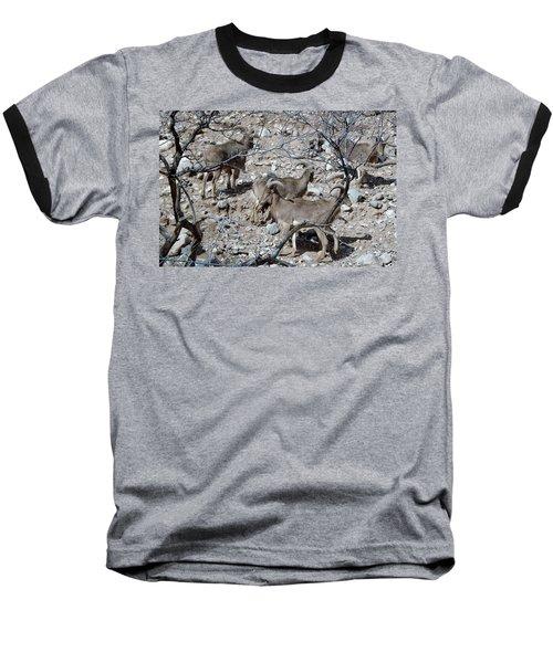 Out Of Africa  Mountain Goats Baseball T-Shirt