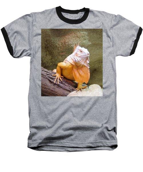 Out Of Africa Orange Lizard 1 Baseball T-Shirt