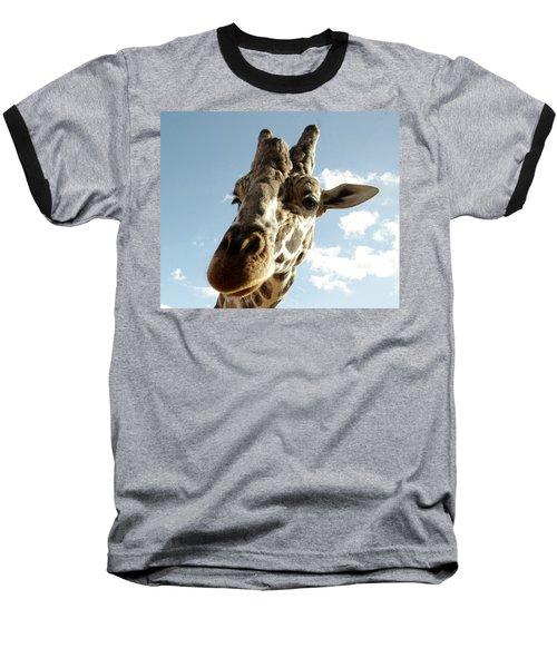 Out Of Africa  Reticulated Giraffe Baseball T-Shirt