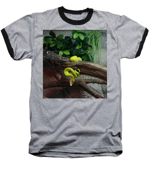 Out Of Africa Tree Snake Baseball T-Shirt