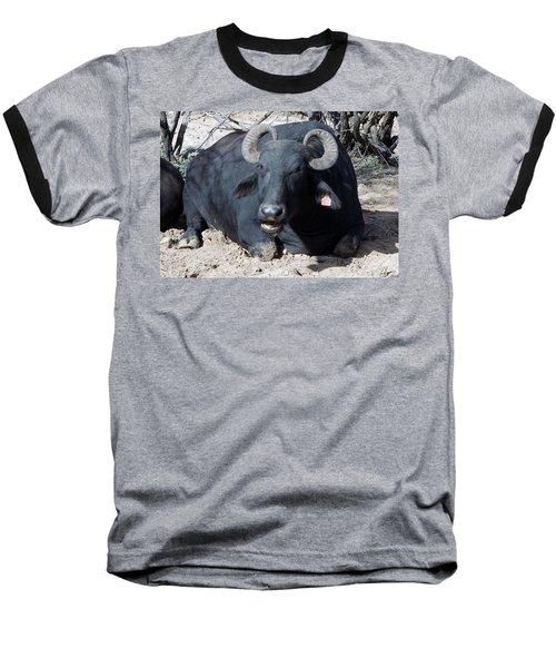 Out Of Africa  Water Buffalo Baseball T-Shirt
