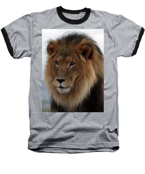 Out Ofafrica  Lion 4 Baseball T-Shirt