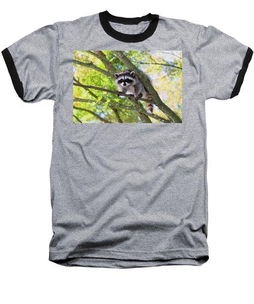 Out On A Limb Baseball T-Shirt by Kym Backland