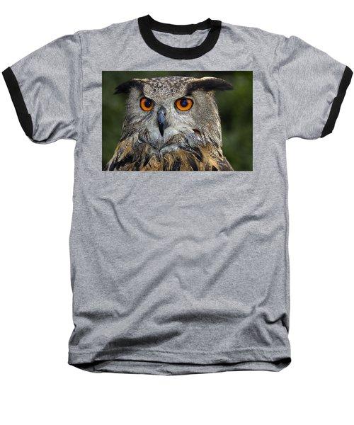 Owl Bubo Bubo Portrait Baseball T-Shirt