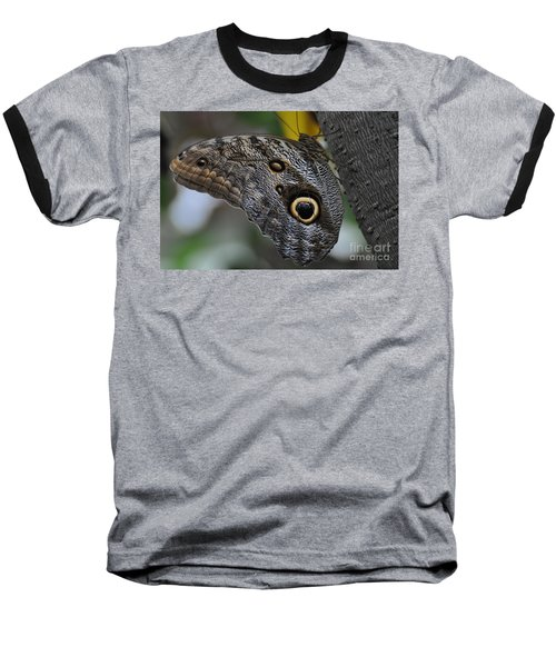 Baseball T-Shirt featuring the photograph Owl Butterfly by Bianca Nadeau