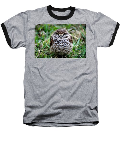 Owl. Best Photo Baseball T-Shirt