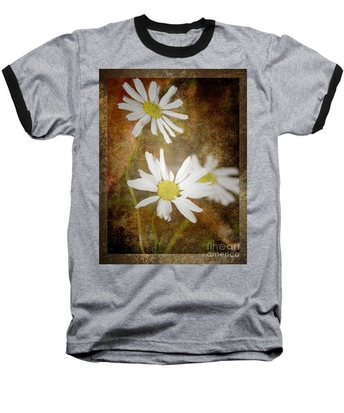 Ox Eye Dasies Baseball T-Shirt by Lynn Bolt