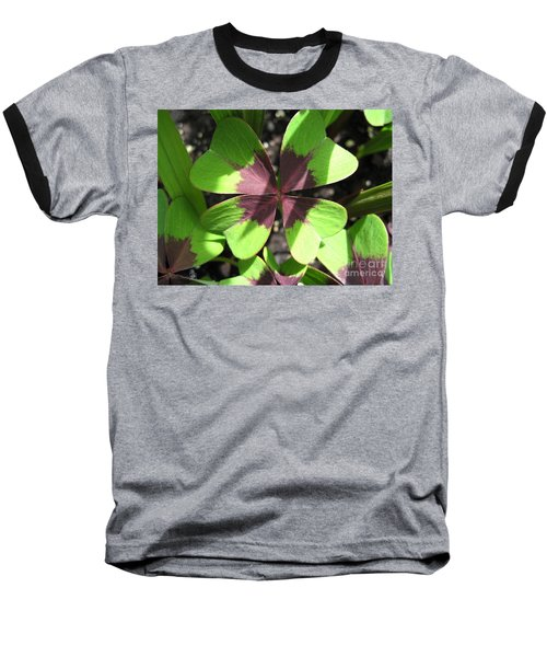 Oxalis Deppei Named Iron Cross Baseball T-Shirt