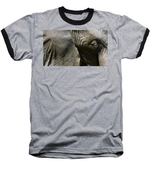 Baseball T-Shirt featuring the photograph Pachyderm by Jennifer Wheatley Wolf