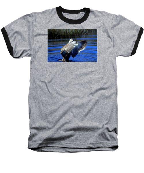 Baseball T-Shirt featuring the photograph Pacific Black Duck by Miroslava Jurcik