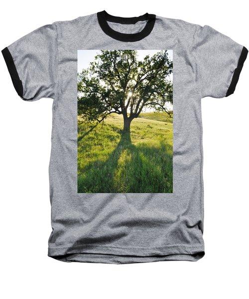 Baseball T-Shirt featuring the photograph Pacific Coast Oak Malibu Creek by Kyle Hanson