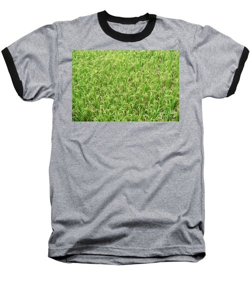 Baseball T-Shirt featuring the photograph Paddy Field by Yew Kwang