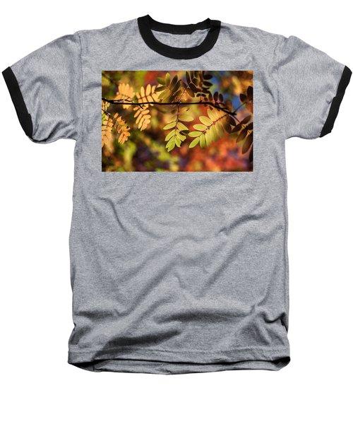 Paint  Baseball T-Shirt by Aaron Aldrich
