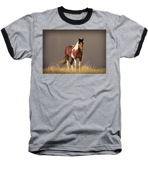 Paint Filly Wild Mustang Sepia Sky Baseball T-Shirt