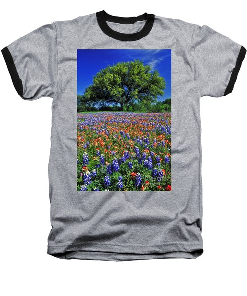 Paintbrush And Bluebonnets - Fs000057 Baseball T-Shirt by Daniel Dempster