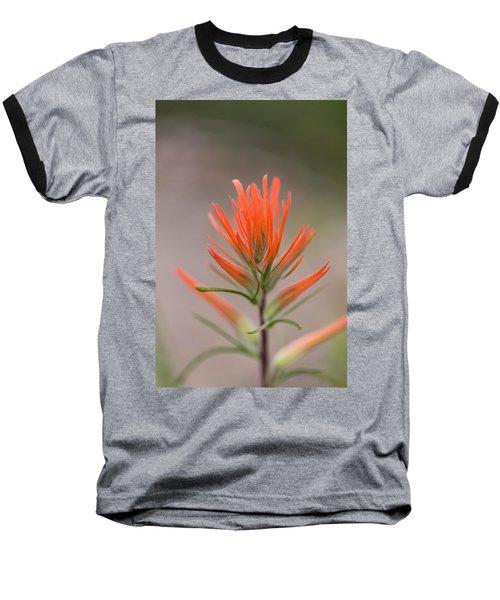 Painterly Paintbrush Baseball T-Shirt