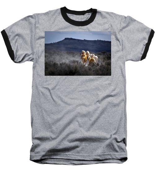 Palomino Buttes Band Baseball T-Shirt