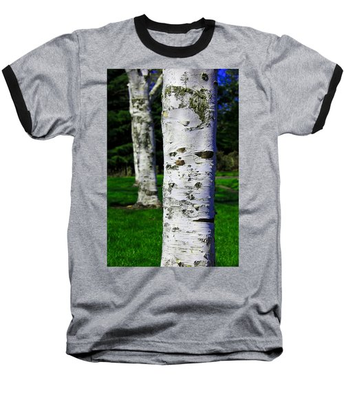 Paper Birch Trees Baseball T-Shirt by Aaron Berg