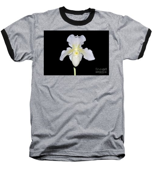Paphiopedilum Orchid F.c. Puddle Superbum  Baseball T-Shirt by Susan Wiedmann