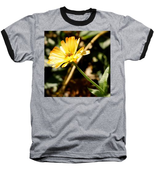 Baseball T-Shirt featuring the photograph Parade by Photographic Arts And Design Studio