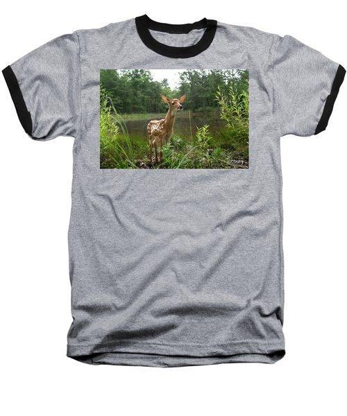Paradise Found Baseball T-Shirt by Bill Stephens