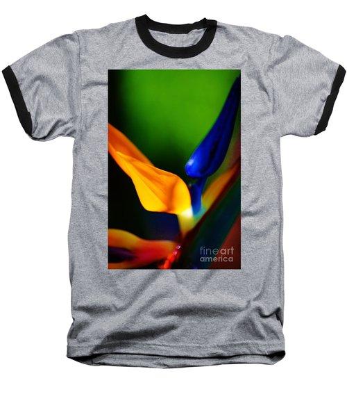 Pardise Birds Baseball T-Shirt