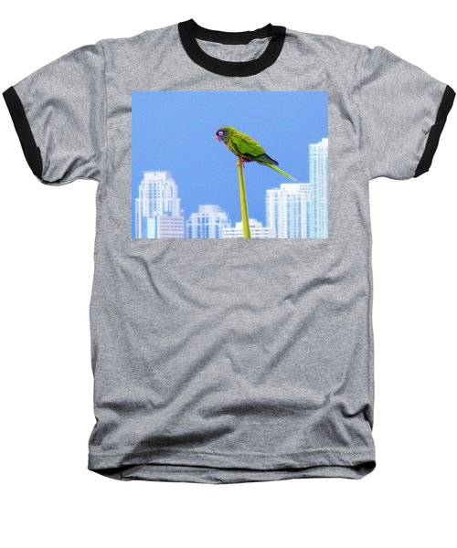 Baseball T-Shirt featuring the photograph Parrot by J Anthony