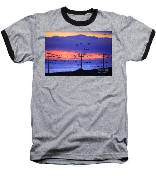 Baseball T-Shirt featuring the photograph Parrots by Bernardo Galmarini
