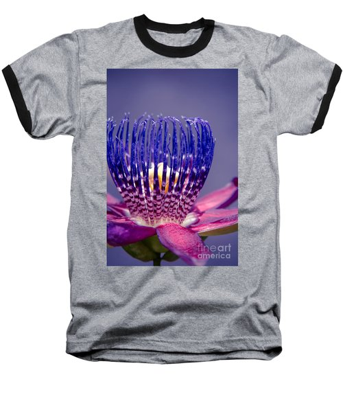 Passiflora Alata - Ruby Star - Ouvaca - Fragrant Granadilla -  Winged-stem Passion Flower Baseball T-Shirt