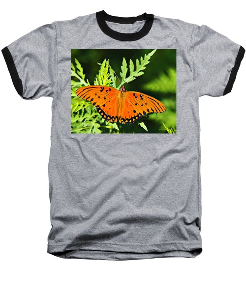 Passion Butterfly Baseball T-Shirt