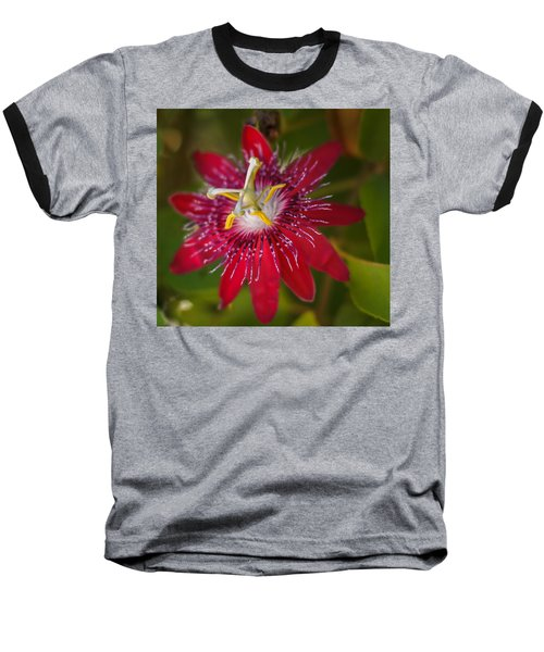 Baseball T-Shirt featuring the photograph Passion Flower by Jane Luxton