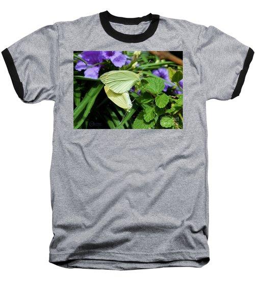 Passion Of The Butterflies Baseball T-Shirt by Robert ONeil