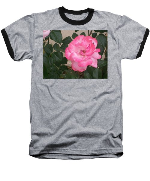 Passion Pink Baseball T-Shirt by Jewel Hengen