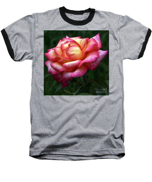Passionate Shades Of A Perfect Rose Baseball T-Shirt