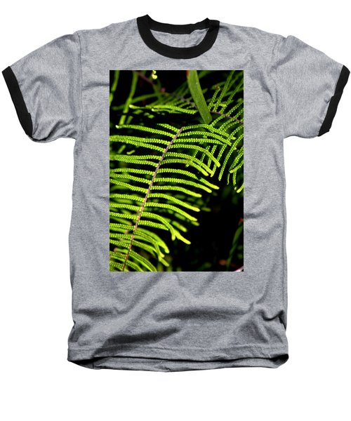 Pauched Coral Fern Baseball T-Shirt by Miroslava Jurcik