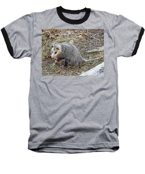 Pawing Possum Baseball T-Shirt by MTBobbins Photography